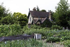 как приватизировать участок в садовом товариществе